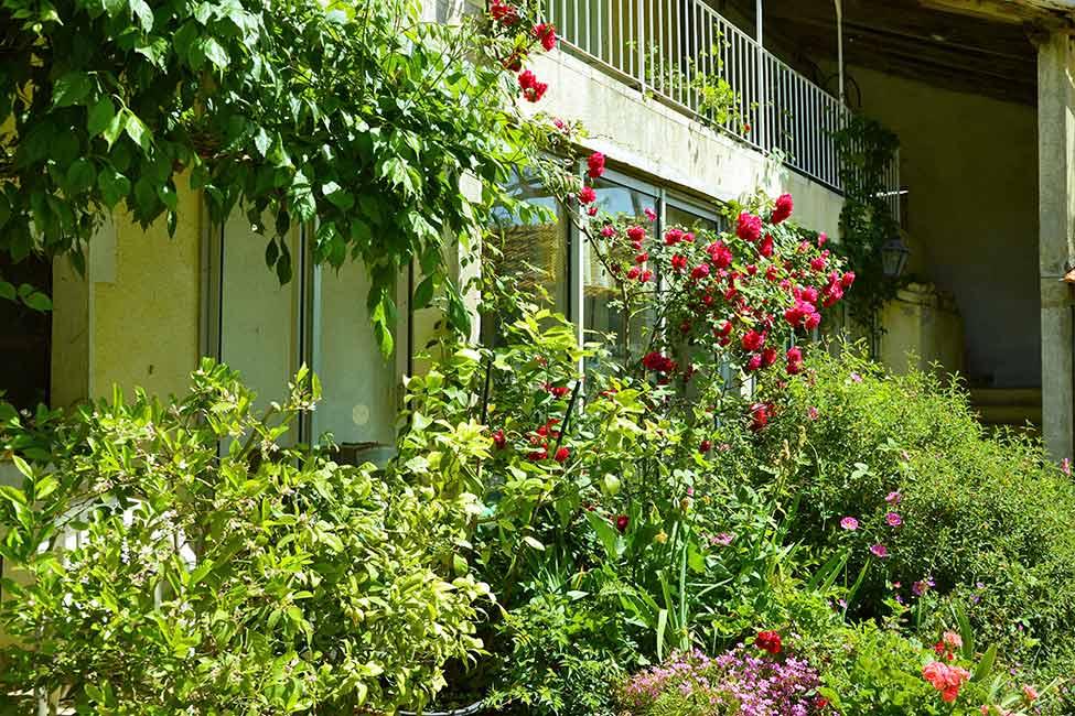 chambre hote ales jardin - Chambre d'hotes Cevennes
